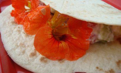 En cas du dimanche soir fleuri : des tortillas à la capucine