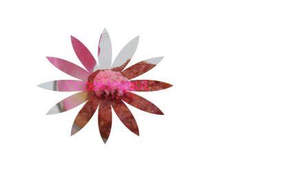 rhubarbe à la rose, un parfum original pour un dessert tout en subtilité