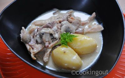 Poule au blanc, une recette belge très confort food parfaite