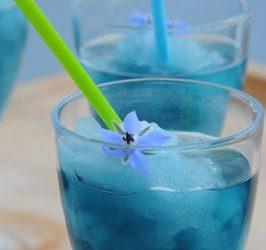 Granité bleu sans alcool et sans colorant pour frimer sur la plage ou ailleurs