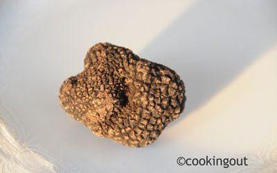 nuage de topinambour à la truffe : petit plaisir noir et recette originale pour un menu de fêtes pour moins de 10 personnes