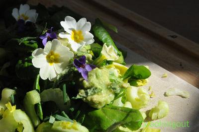 Salade avec les fleurs de printemps, cresson, céleri branche, avocat