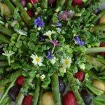 La quintessence de la salade printanière asperges vertes, radis multicolores et févettes fraîches