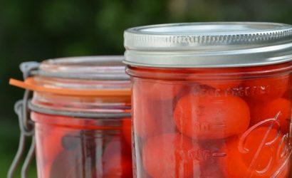 Pickles de radis et pleins d'informations sur le radis