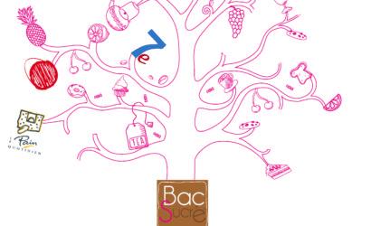 Bac Sucré 2016- commerçants affiliés