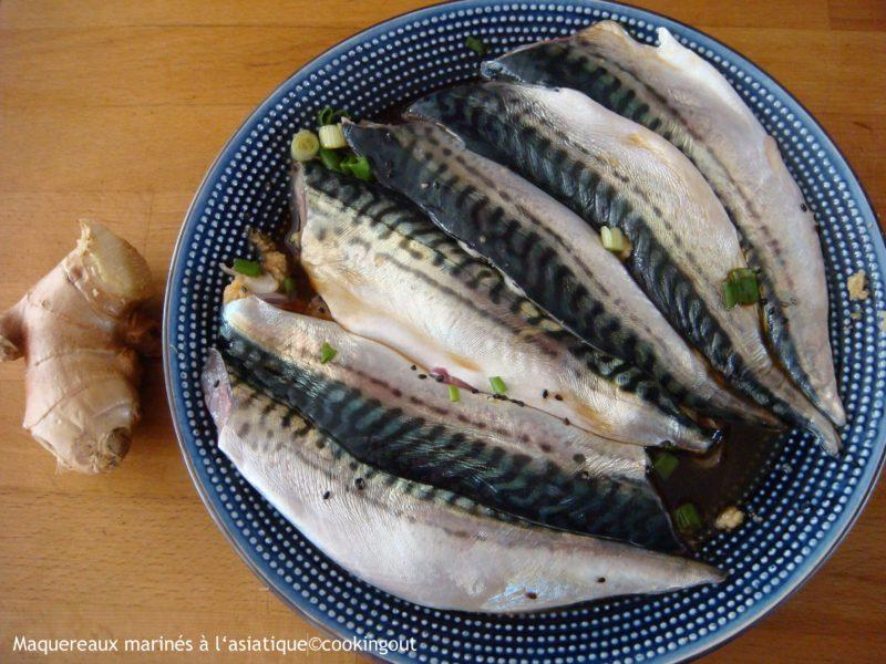filets de maquereaux marinés à l'asiatique