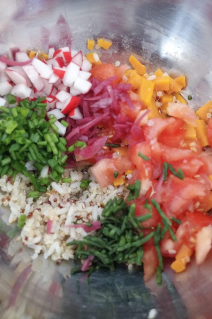 Farce pour les pimientos, trésor des Incas de Tipiac, tomates, carottes cuites, tomates, salicorne, radis, ciboulette et oignon rouges pickle