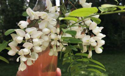 bouteille de sirop de fleurs d'acacia