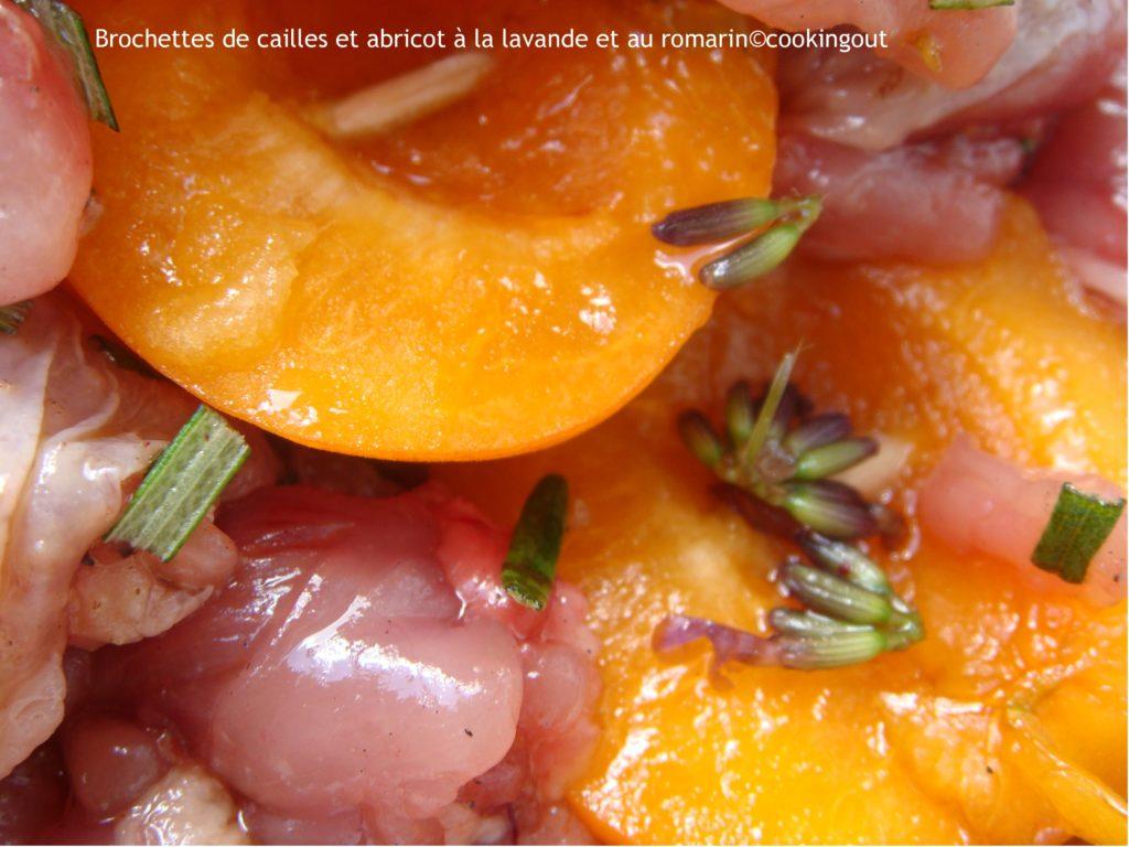 recette de cailles et abricots en brochettes parfumées à la lavande et abricot