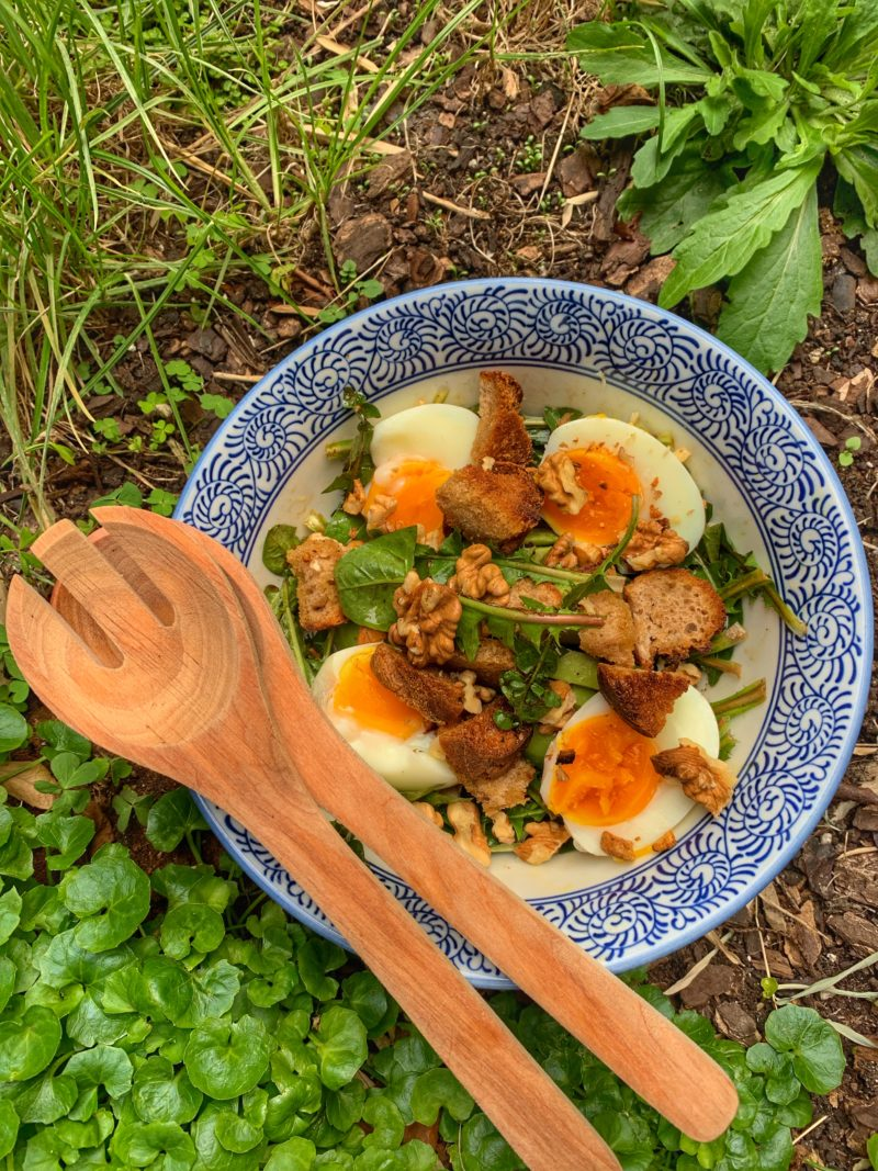 salade de pissenlits œuf mollet avec croûtons à l'ail et noix