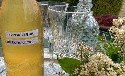 Dégustation de sirop de fleurs de sureau au château