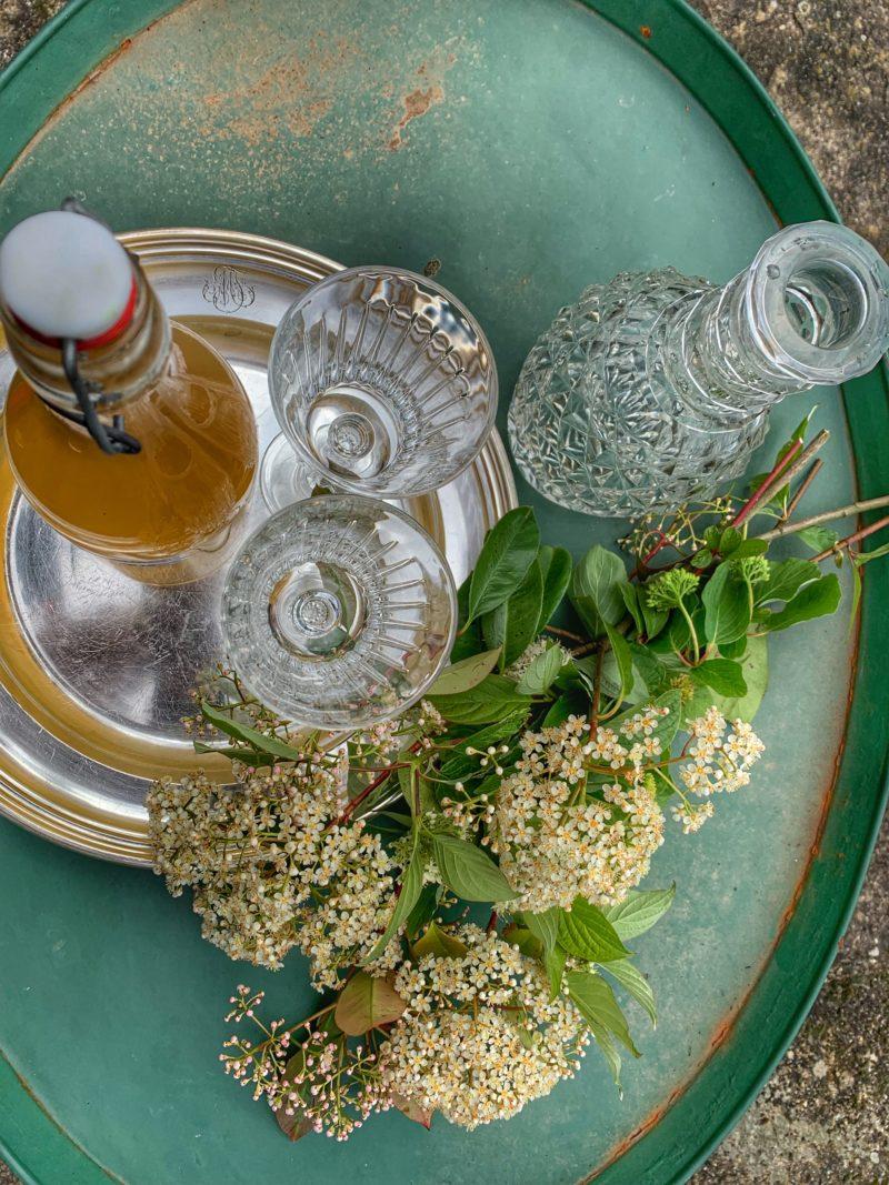 sirop de fleurs de sureau fait maison