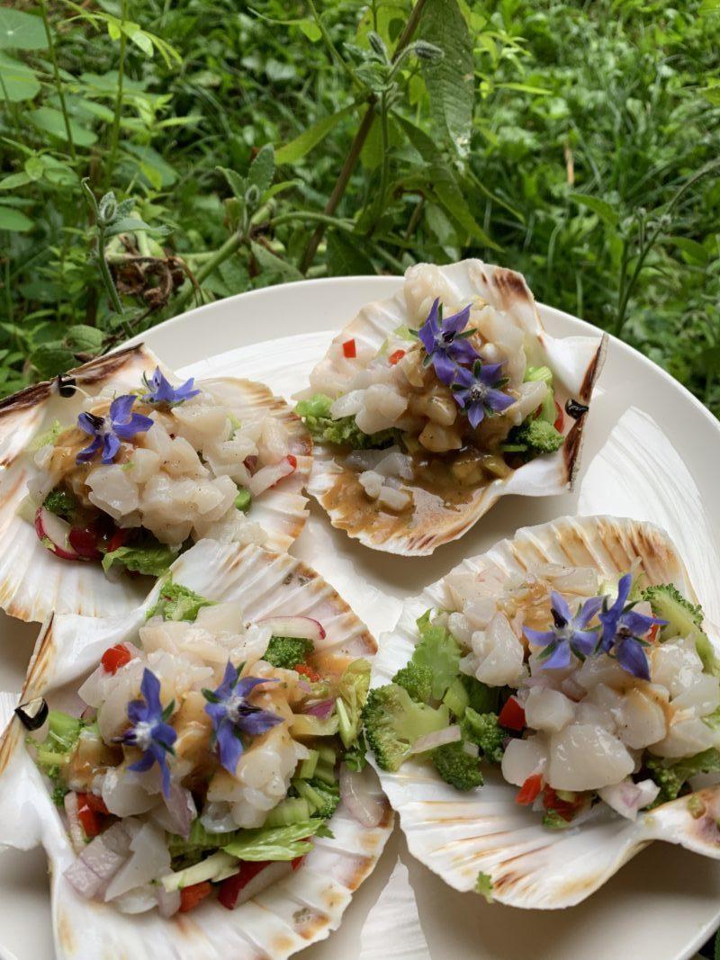 tartare de St Jacques sur salade de légume et parfumé à la bourrache