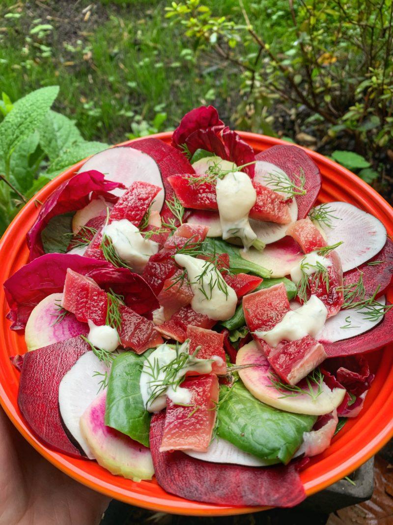 Salade avec des sardines méthode gravad à la betterave