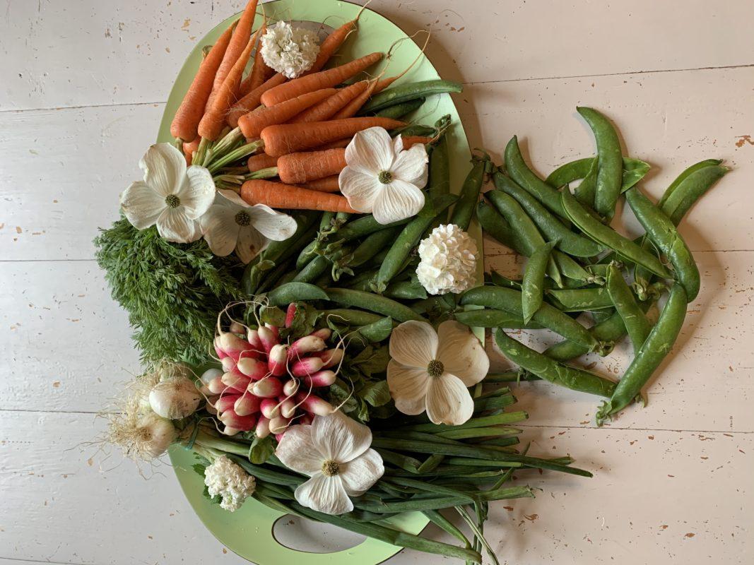 Au printemps on a plus de fanes de légumes que de légumes. Ne les jetez plus !