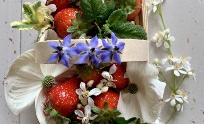 barquette de fraises françaises au printemps