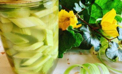 pickles de rhubarbe comme des cornichons