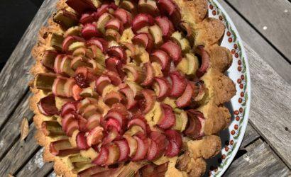 Tarte à la rhubarbe fond de tarte gâteau breton